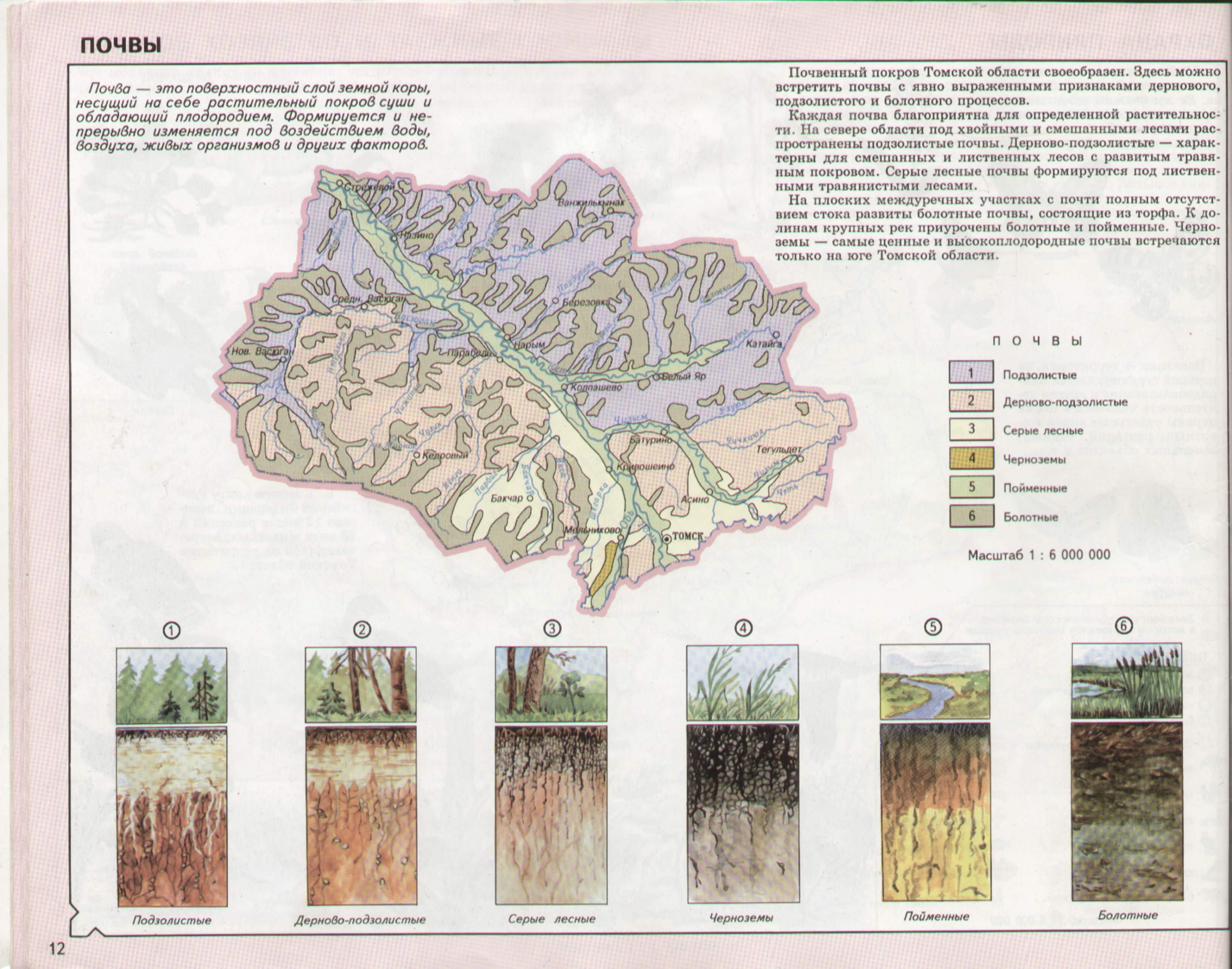ощущение тепла карта грунта томской области художественных